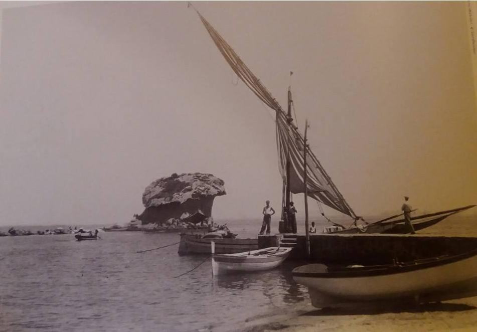 Foto Fungo Ischia Cartolina anni 20